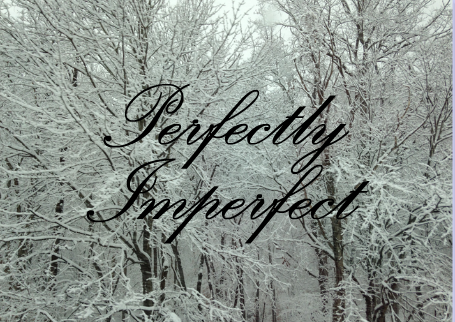 perfectlyimperfectsnow