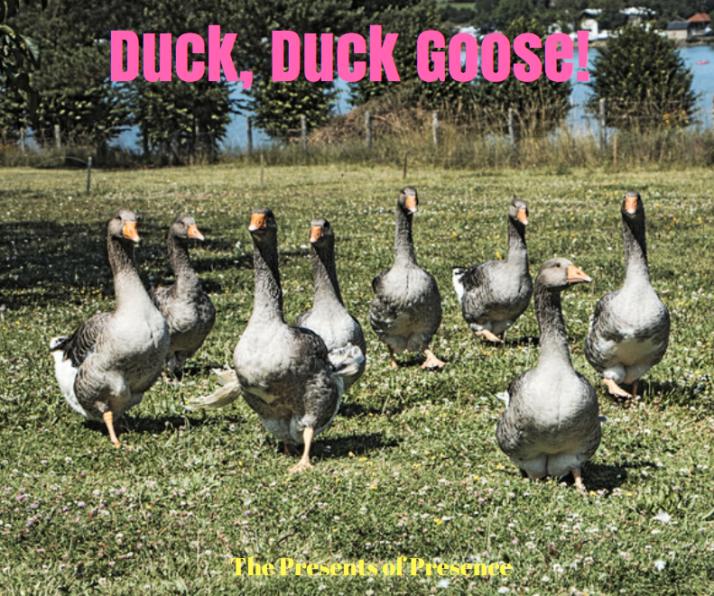 duckduckgoose.PNG