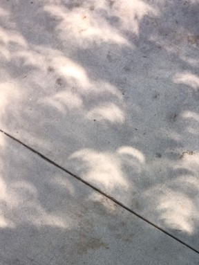 Crescent shadows on concrete