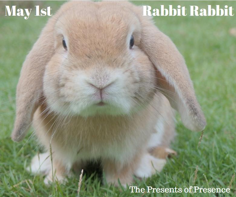 may1strabbitrabbit