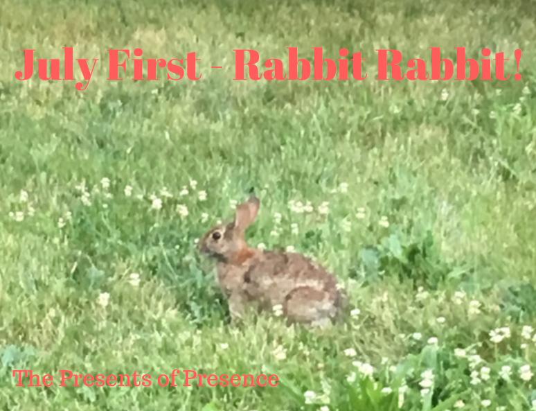 julyfirstrabbitrabbit