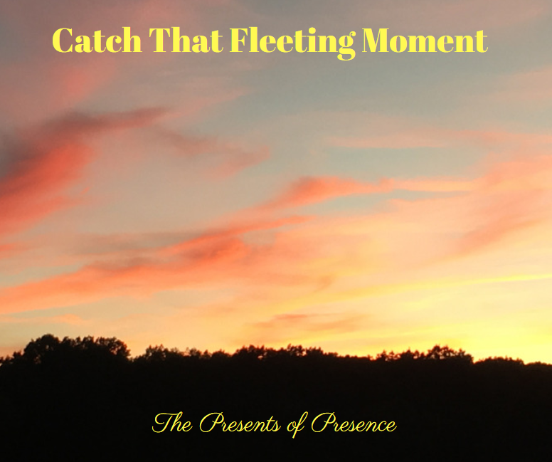 catchthatfleetingmoment