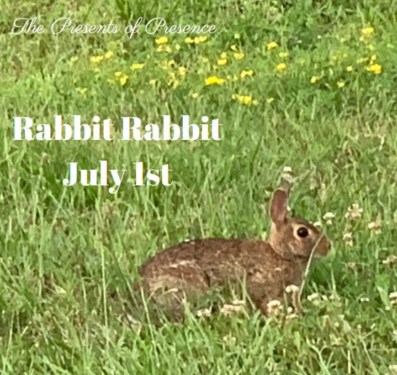 RabbitRabbitJuly1st