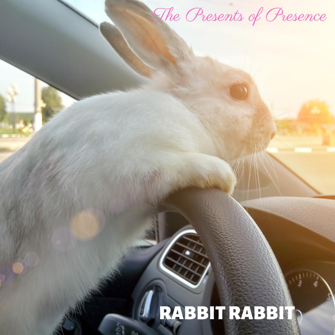 Rabbit Rabbit may 1